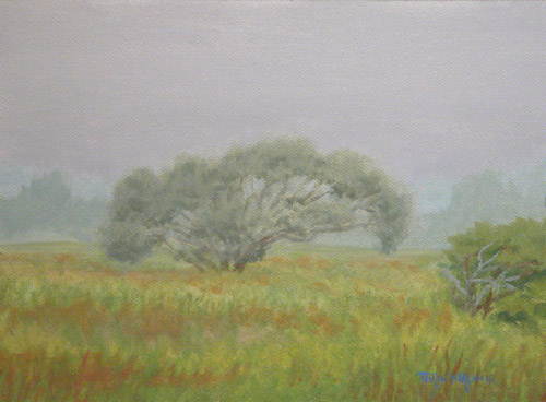 """Fog In The Field"""