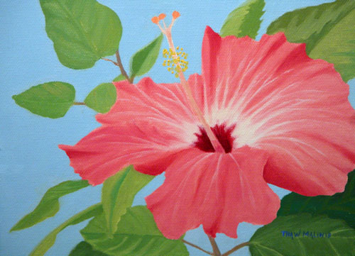 """Winter Hibiscus"""