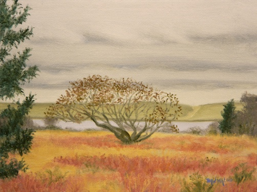 """Autumn Field"""