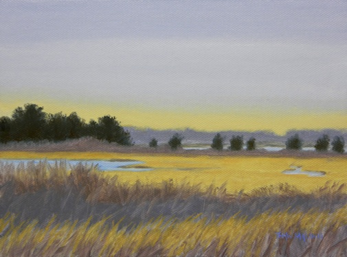 """Sengekontacket Pond Marsh"""