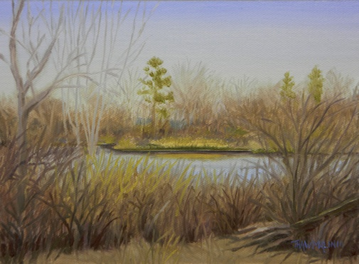 """Sheriff's Pond"""